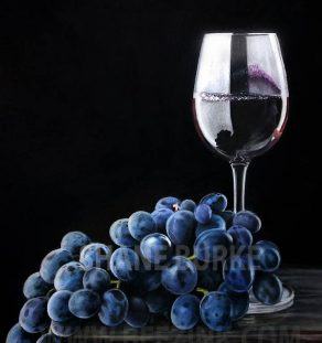 Grapes and wine wm